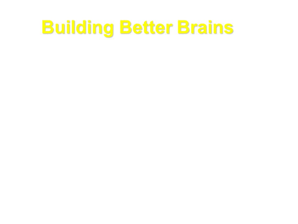 Building Better Brains The process of building a healthy brain is influenced by a wide range of factors, particularly the first 2000 days from conception - A strong foundation  Protection from toxic stress  Strong air traffic control Skills  SERVE AND RETURN*