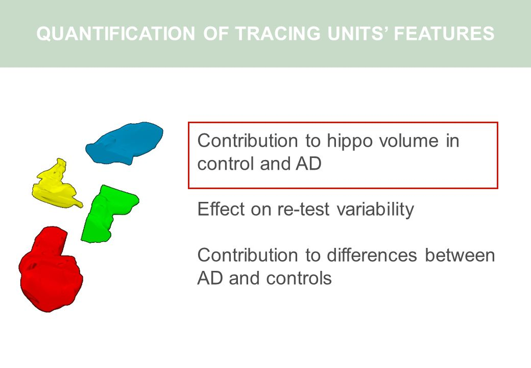 Contribution to hippo volume in control and AD Effect on re-test variability Contribution to differences between AD and controls QUANTIFICATION OF TRACING UNITS' FEATURES