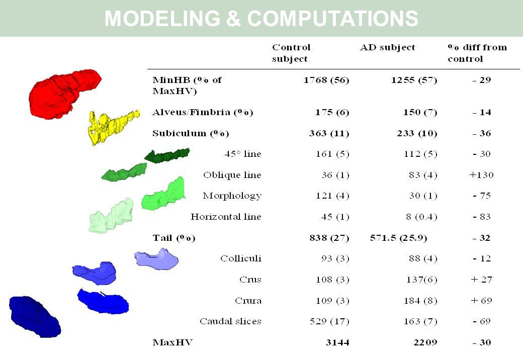 MODELING & COMPUTATIONS