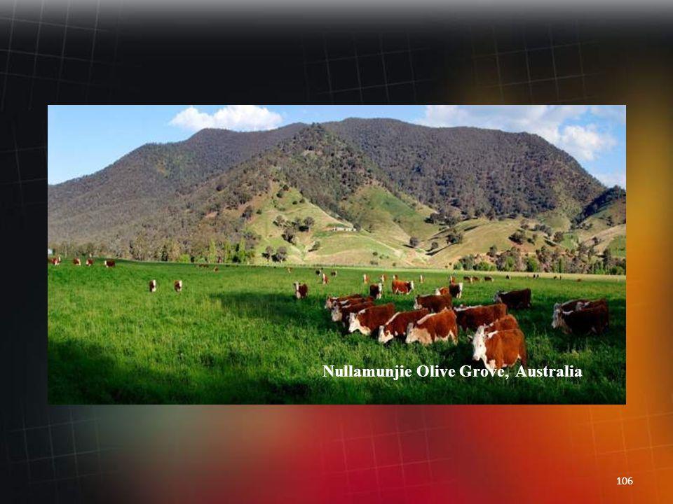 105 McMillan's Lookout, Australia
