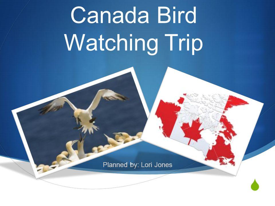  Canada Bird Watching Trip Planned by: Lori Jones