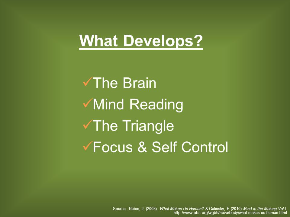 The Brain Mind Reading The Triangle Focus & Self Control What Develops? Source: Rubin, J. (2008). What Makes Us Human? & Galinsky, E.(2010) Mind in th