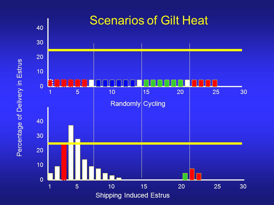 15 10 15 20 2530 Randomly Cycling Percentage of Delivery in Estrus 15 10 15 20 2530 Shipping Induced Estrus 40 30 20 10 0 40 30 20 10 0 Scenarios of Gilt Heat