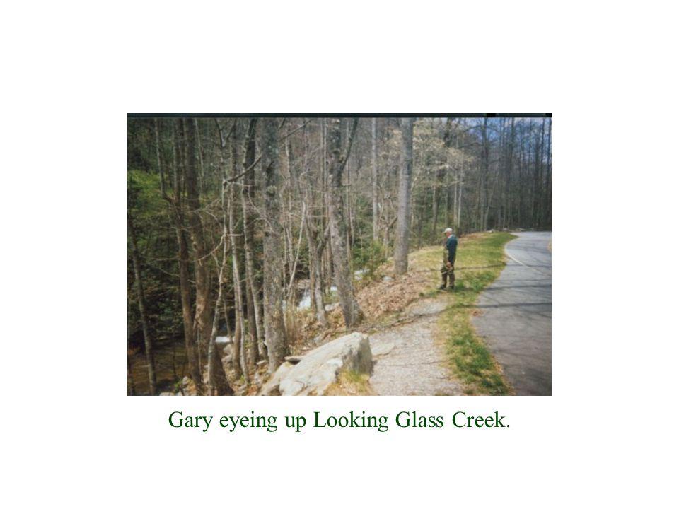 Gary eyeing up Looking Glass Creek.