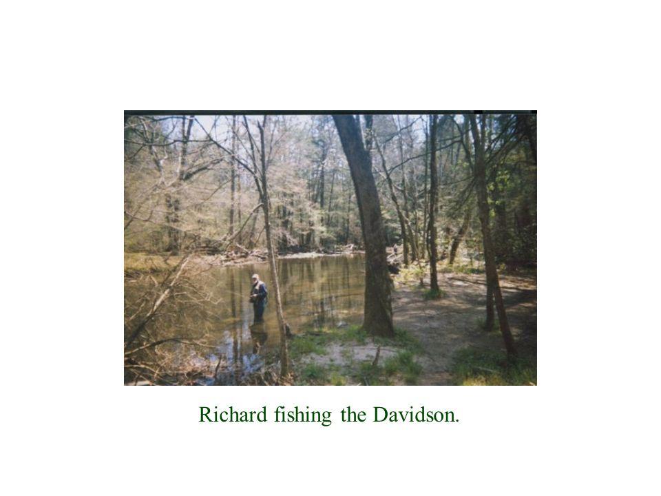 Richard fishing the Davidson.