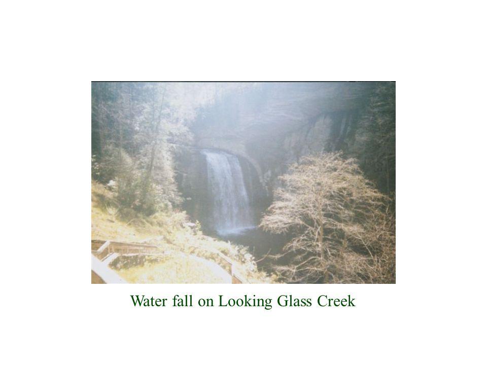 Water fall on Looking Glass Creek