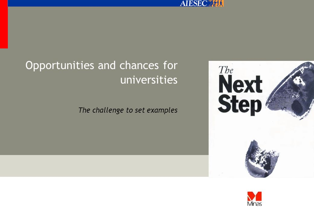 Opportunities and chances for universities The challenge to set examples