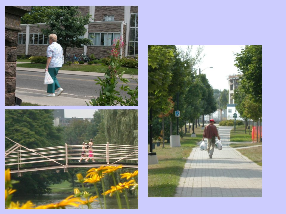 Creating Pedestrian Network Using data that the area municipalities provided, we were able to better model the pedestrian experience Added pathways, trails, cul-de- sacs, and other pedestrian links