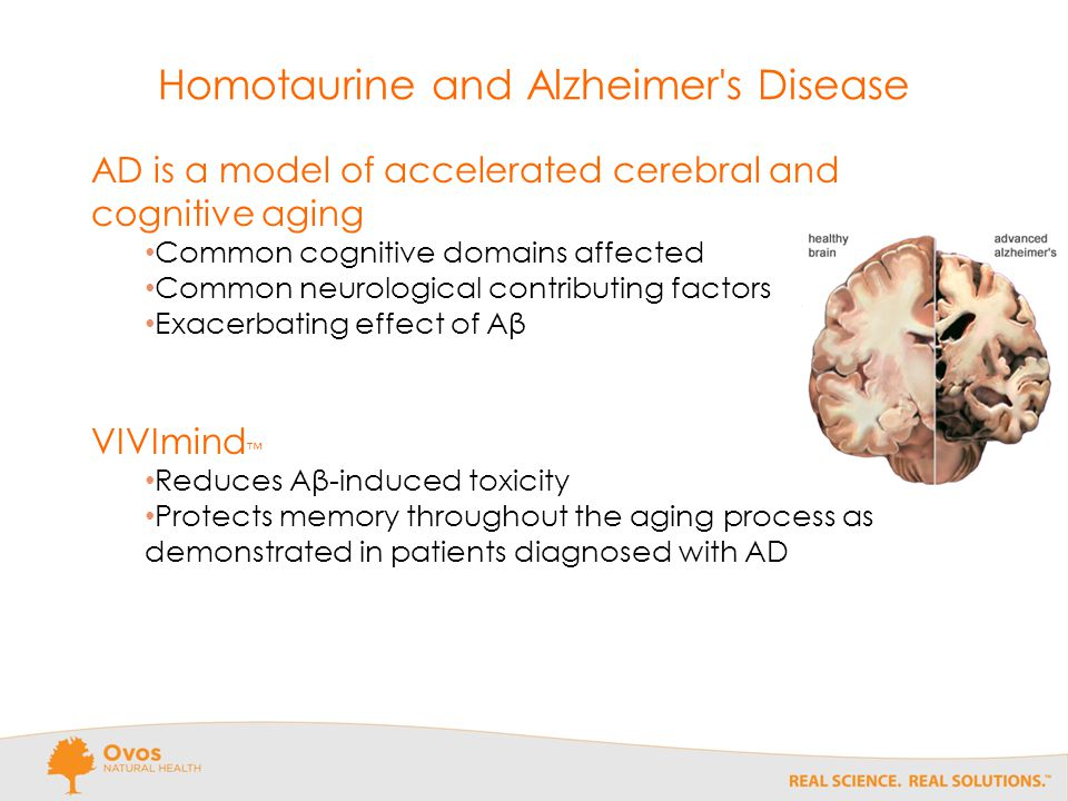 Homotaurine and Alzheimer s Disease AD is a model of accelerated cerebral and cognitive aging Common cognitive domains affected Common neurological contributing factors Exacerbating effect of Aβ VIVImind ™ Reduces Aβ-induced toxicity Protects memory throughout the aging process as demonstrated in patients diagnosed with AD