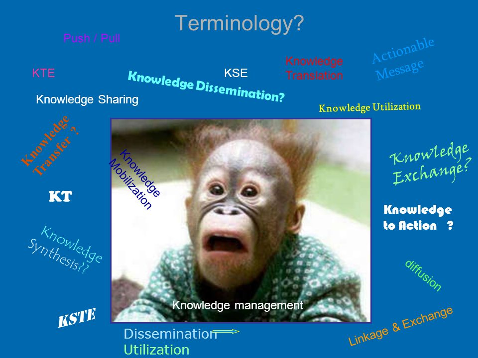 1616 Terminology Research Utilization The process by which specific research- based knowledge is implemented in practice Estabrooks et al, 2003 Implementation The execution of the adoption decision where the research or decision is put into practice