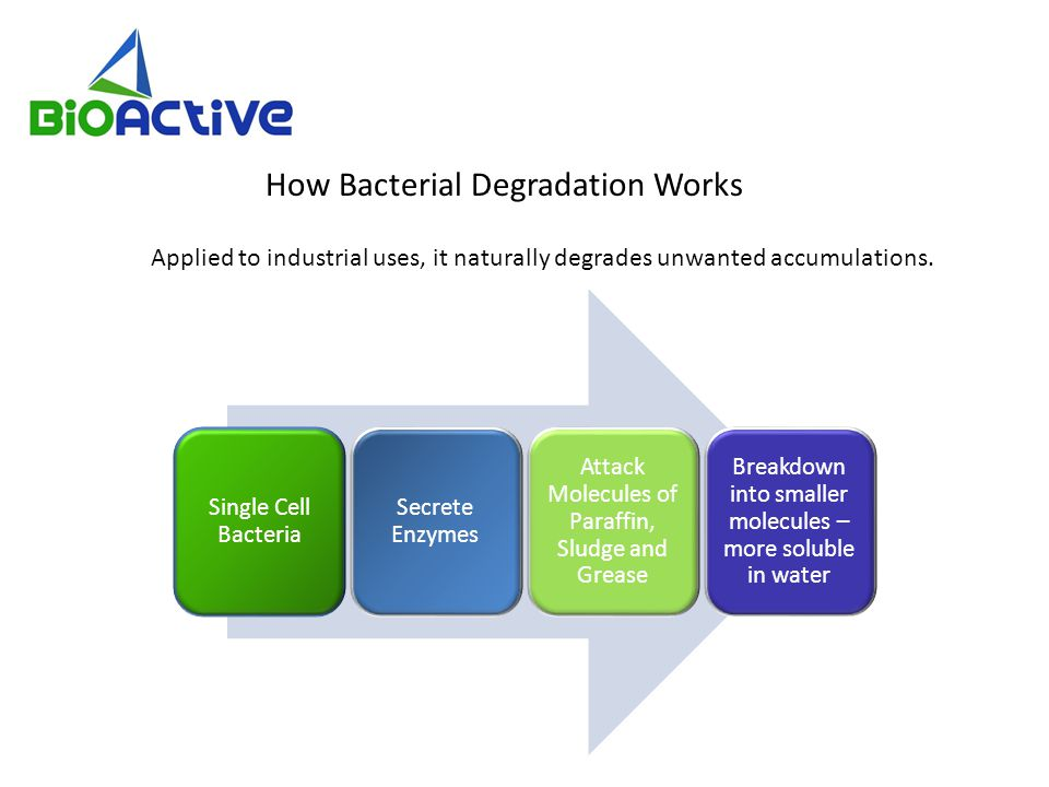How Bacterial Degradation Works Applied to industrial uses, it naturally degrades unwanted accumulations.
