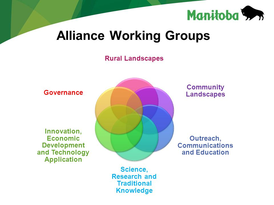 Manitoba Water Stewardship Manitoba Water Stewardship - Lake Winnipeg Alliance Working Groups Rural Landscapes Community Landscapes Outreach, Communications and Education Science, Research and Traditional Knowledge Innovation, Economic Development and Technology Application Governance