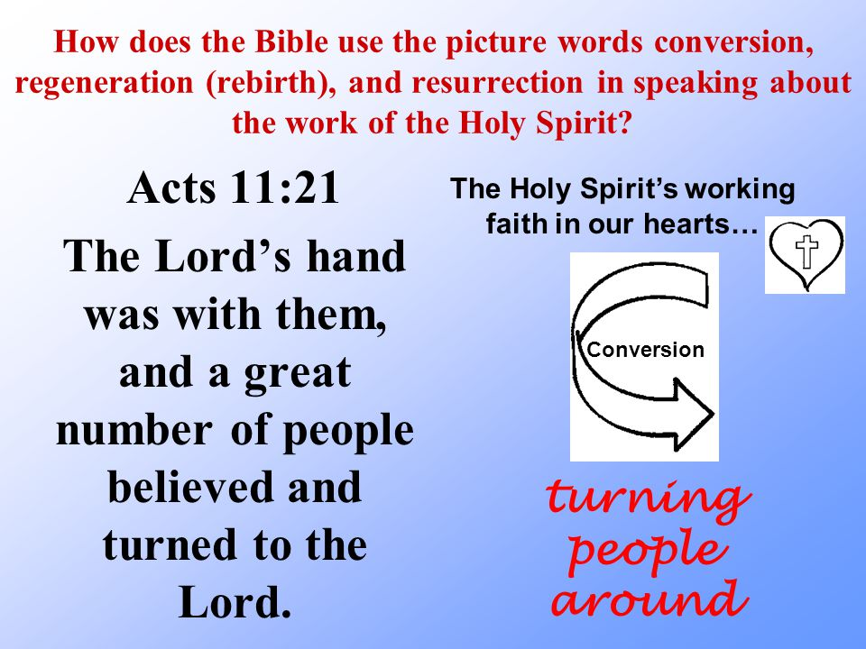 Lesson 38 The Bible uses picture words to help me understand the Holy Spirit's work of bringing me to faith.