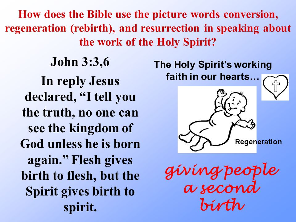 How does the Bible use the picture words conversion, regeneration (rebirth), and resurrection in speaking about the work of the Holy Spirit.