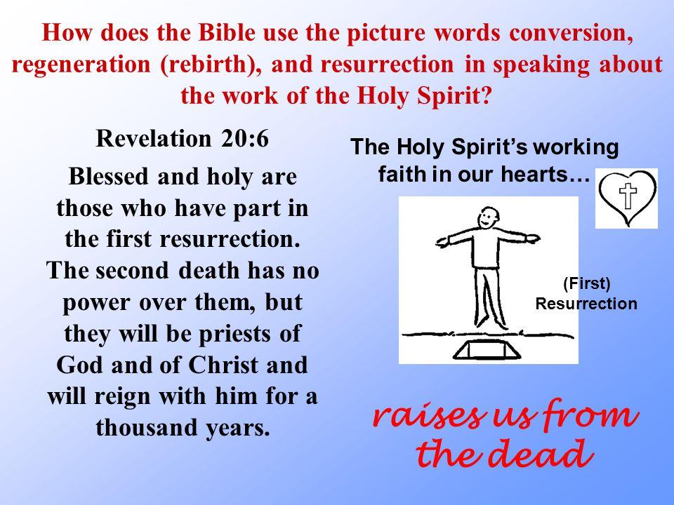 Vocabulary… Resurrection raising us from the dead