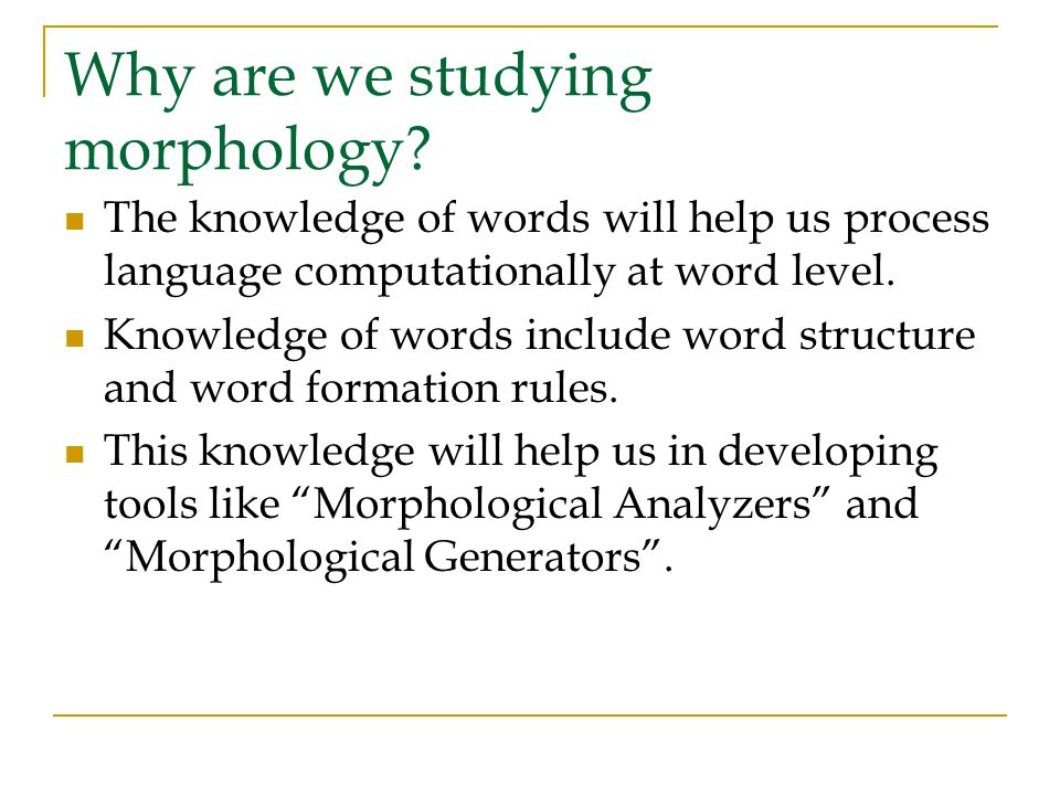 Why are we studying morphology.