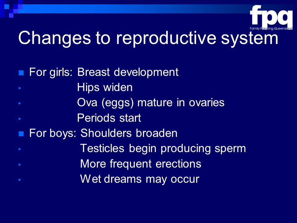 Changes to reproductive system For girls: Breast development Hips widen Ova (eggs) mature in ovaries Periods start For boys: Shoulders broaden Testicles begin producing sperm More frequent erections Wet dreams may occur