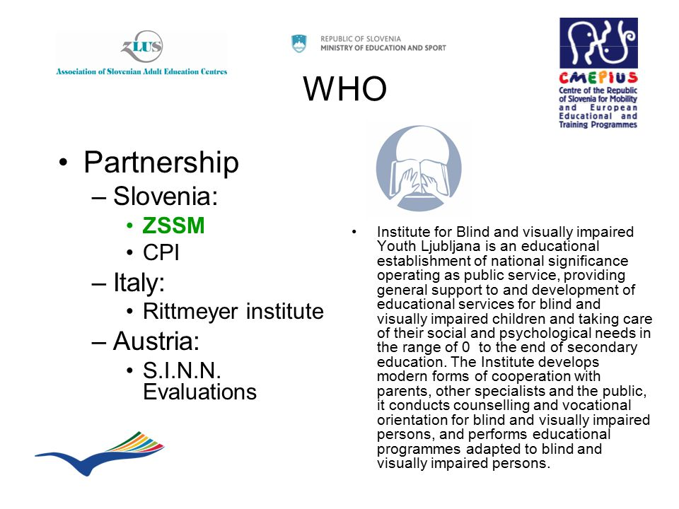 WHO Partnership –Slovenia: ZSSM CPI –Italy: Rittmeyer institute –Austria: S.I.N.N. Evaluations Institute for Blind and visually impaired Youth Ljublja