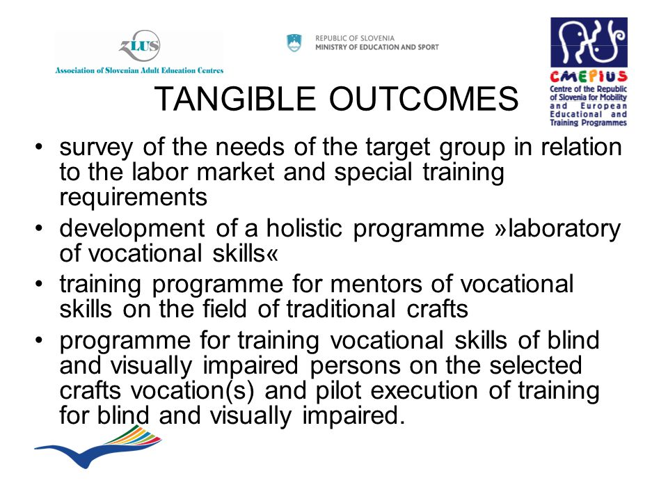 TANGIBLE OUTCOMES survey of the needs of the target group in relation to the labor market and special training requirements development of a holistic