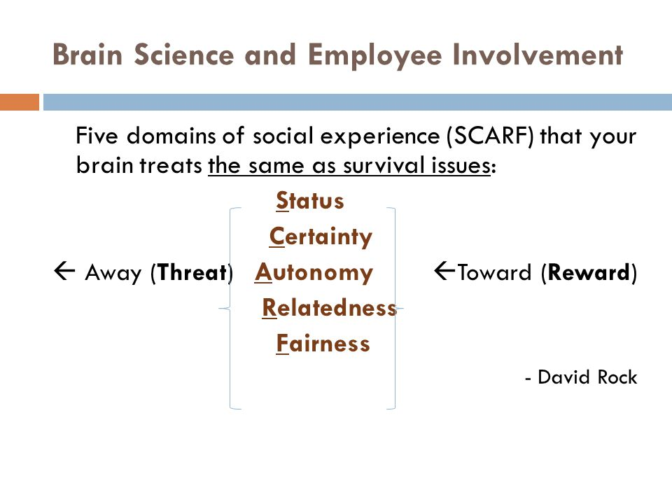 Brain Science and Employee Involvement Five domains of social experience (SCARF) that your brain treats the same as survival issues: Status Certainty