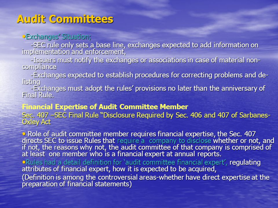Audit Committees Exchanges' Situation; Exchanges' Situation; -SEC rule only sets a base line, exchanges expected to add information on implementation