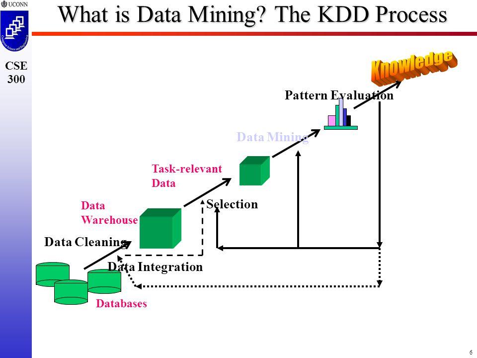 6 CSE 300 What is Data Mining.