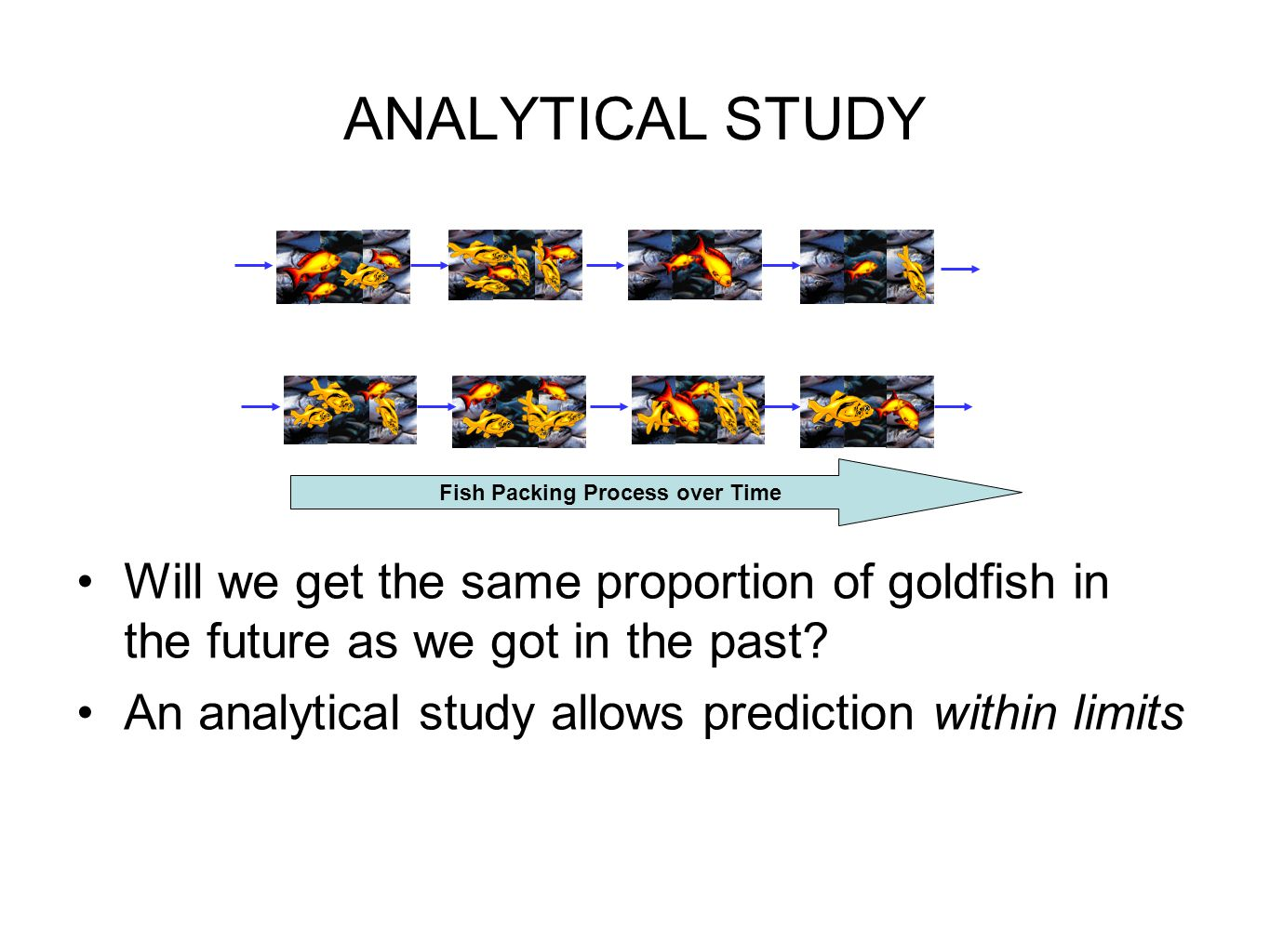 ANALYTICAL STUDY Will we get the same proportion of goldfish in the future as we got in the past.