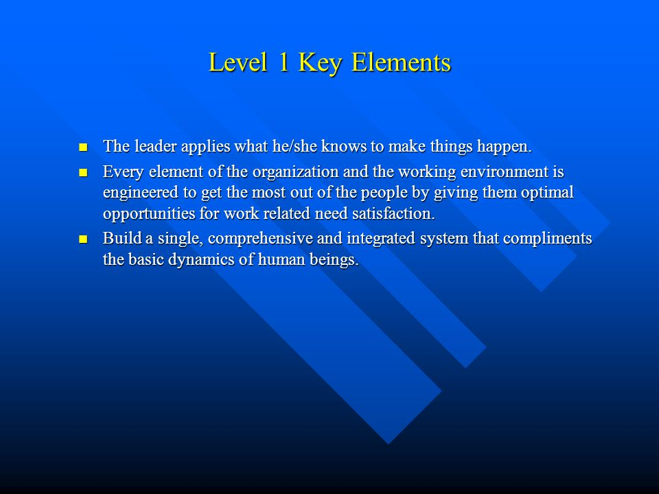 Level 1 Key Elements The leader applies what he/she knows to make things happen. The leader applies what he/she knows to make things happen. Every ele
