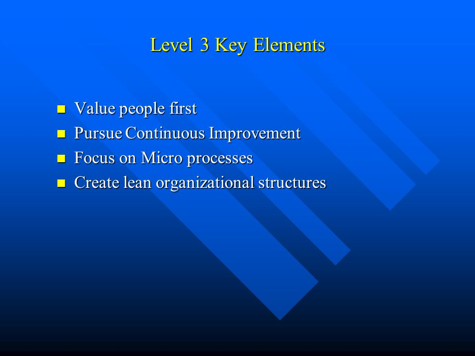Level 3 Key Elements Value people first Value people first Pursue Continuous Improvement Pursue Continuous Improvement Focus on Micro processes Focus