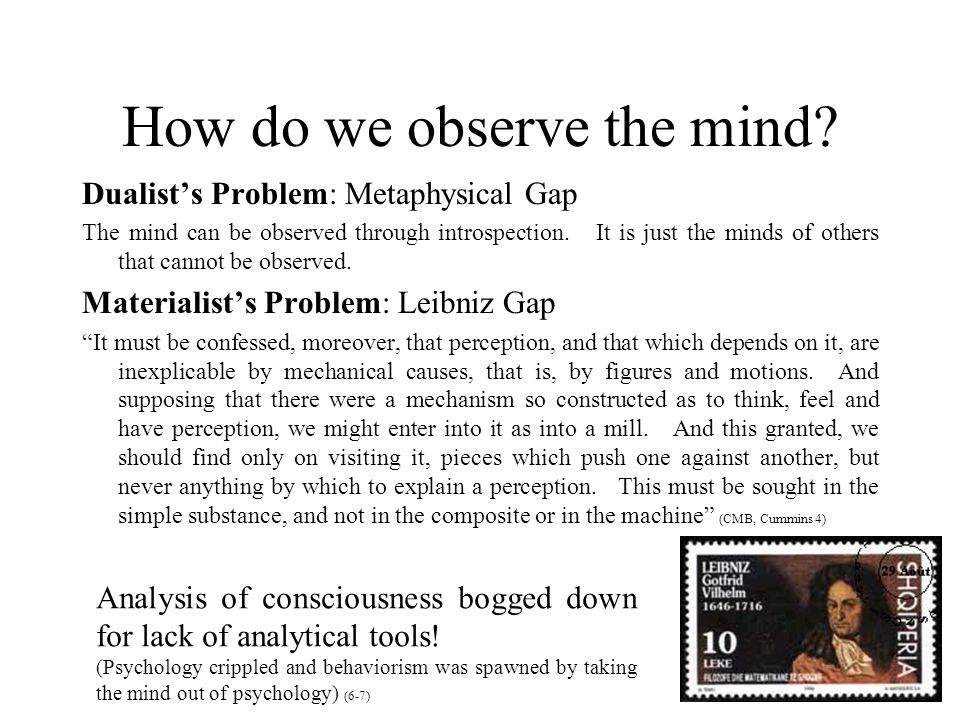 How do we observe the mind? Dualist's Problem: Metaphysical Gap The mind can be observed through introspection. It is just the minds of others that ca