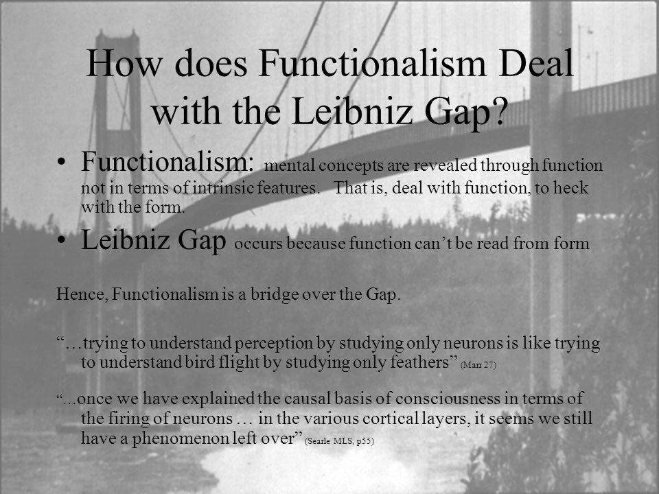 How does Functionalism Deal with the Leibniz Gap? Functionalism: mental concepts are revealed through function not in terms of intrinsic features. Tha