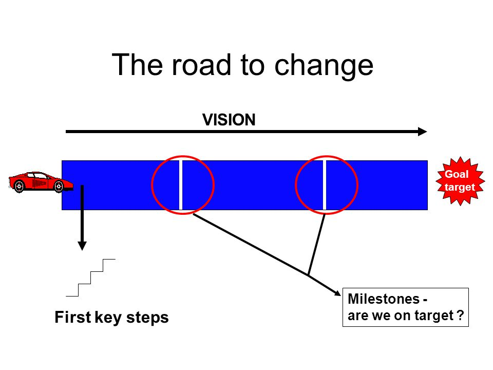 The road to change Goal target VISION First key steps Milestones - are we on target