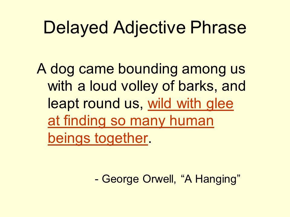 Delayed Adjective Phrase A dog came bounding among us with a loud volley of barks, and leapt round us, wild with glee at finding so many human beings