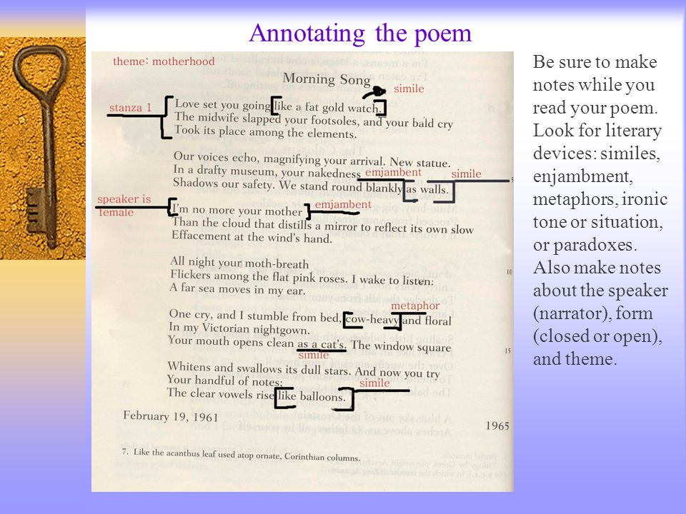 Annotating the poem Be sure to make notes while you read your poem.