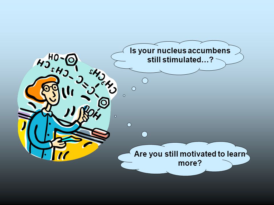 Is your nucleus accumbens still stimulated…? Are you still motivated to learn more?