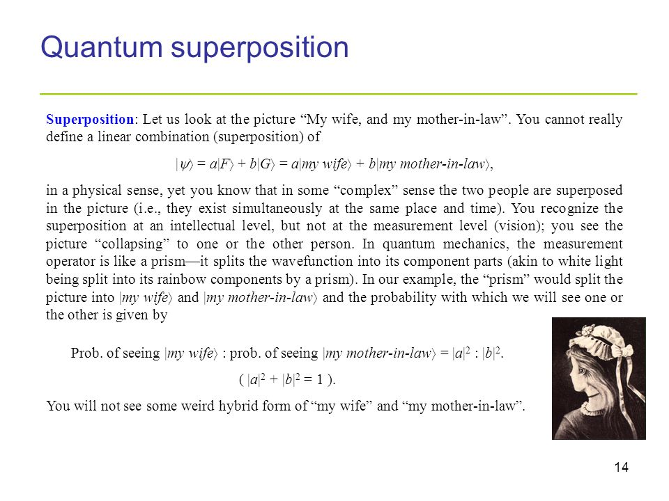 "14 Quantum superposition _________________________________________ Superposition: Let us look at the picture ""My wife, and my mother-in-law"". You cann"