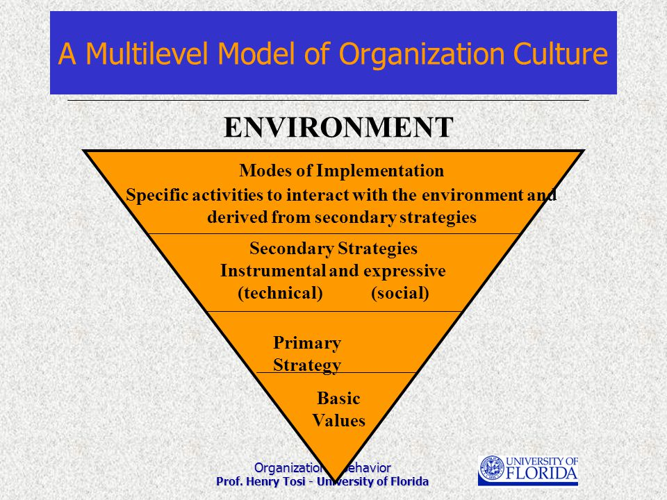 Organizational Behavior Prof. Henry Tosi - University of Florida A Multilevel Model of Organization Culture Modes of Implementation Specific activitie