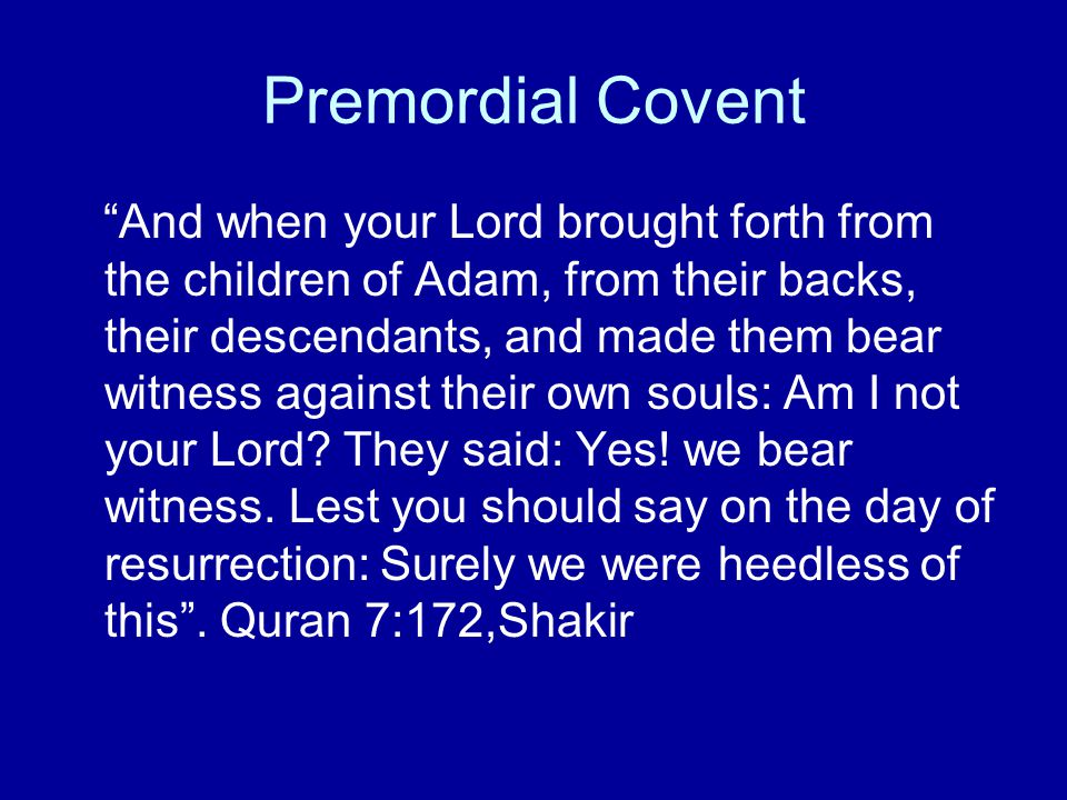 "Premordial Covent ""And when your Lord brought forth from the children of Adam, from their backs, their descendants, and made them bear witness against"