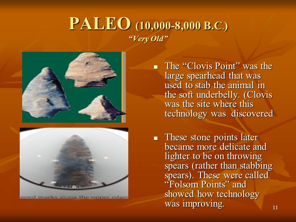 "11 PALEO (10,000-8,000 B.C. ) ""Very Old"" The ""Clovis Point"" was the large spearhead that was used to stab the animal in the soft underbelly. (Clovis w"