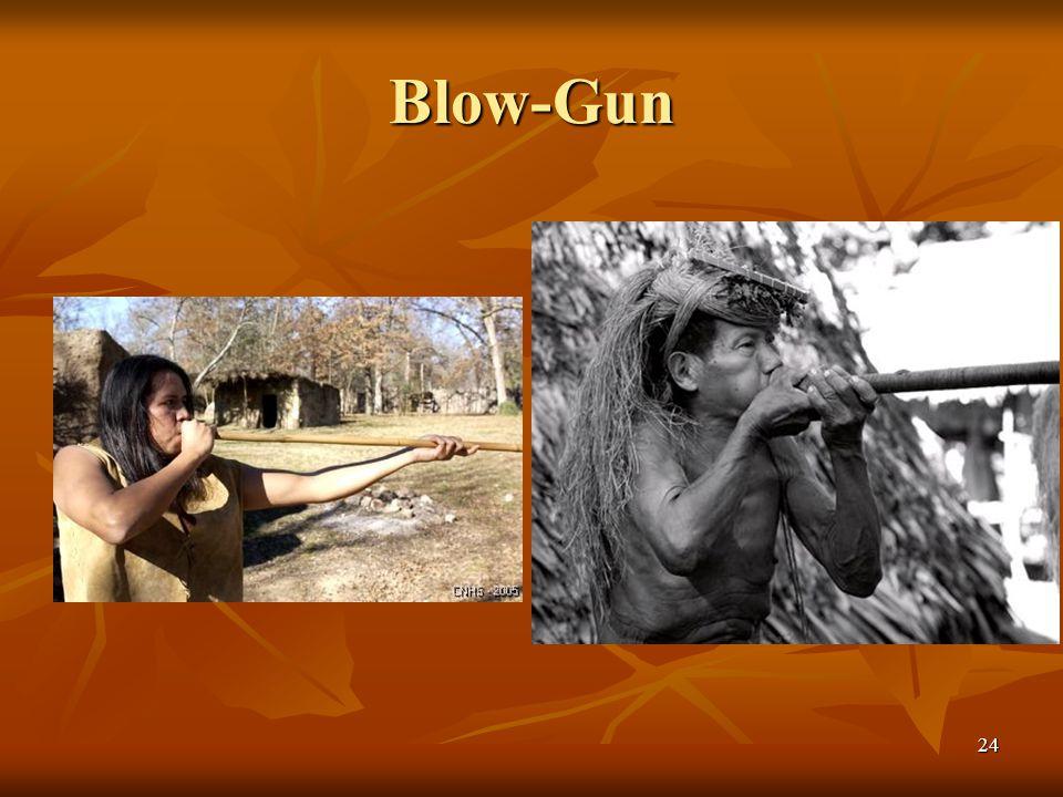 Blow-Gun 24
