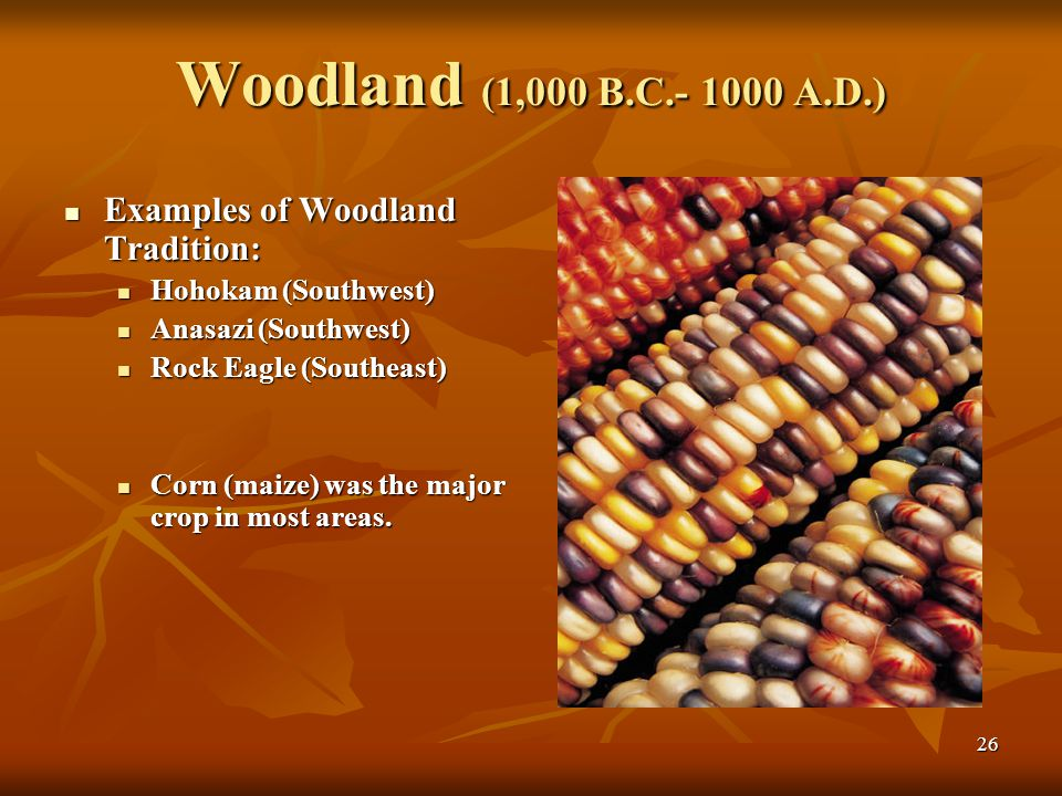 26 Woodland (1,000 B.C.- 1000 A.D.) Examples of Woodland Tradition: Examples of Woodland Tradition: Hohokam (Southwest) Hohokam (Southwest) Anasazi (Southwest) Anasazi (Southwest) Rock Eagle (Southeast) Rock Eagle (Southeast) Corn (maize) was the major crop in most areas.