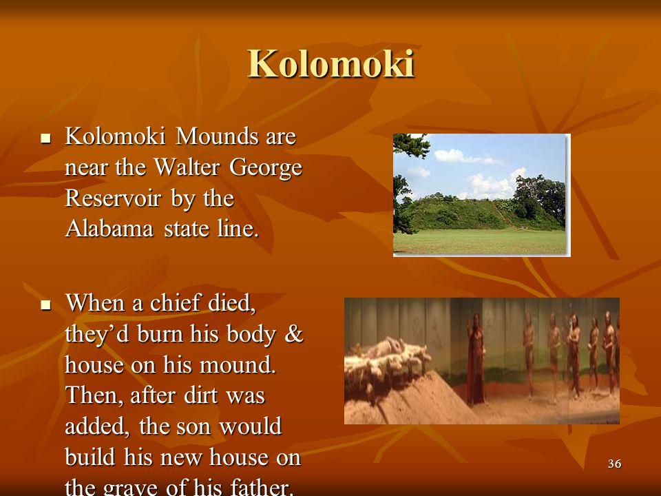 Kolomoki Kolomoki Mounds are near the Walter George Reservoir by the Alabama state line.