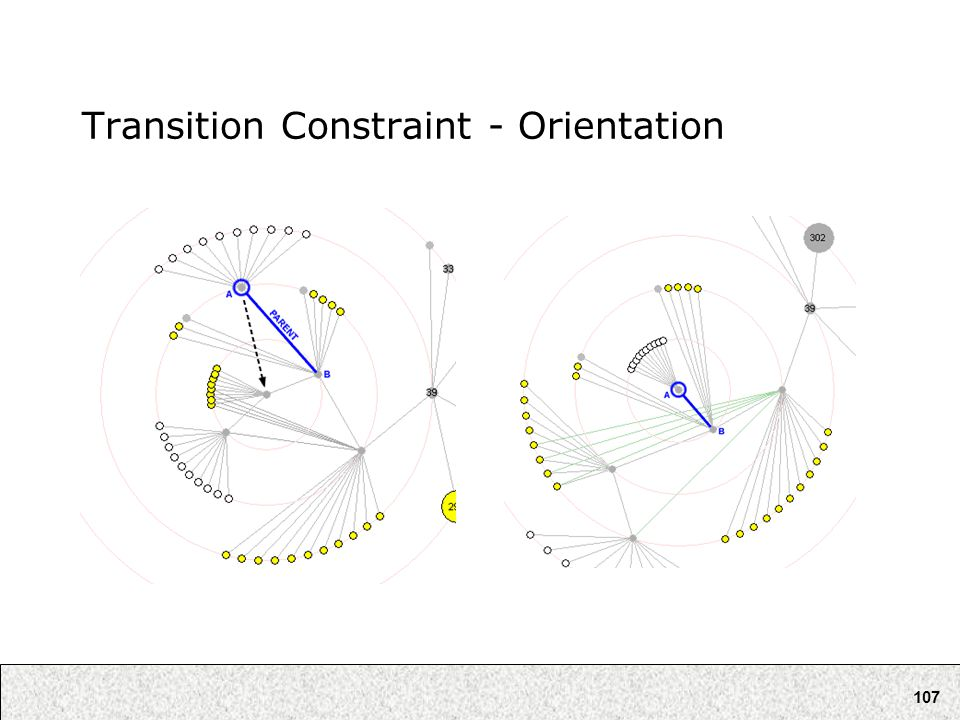 107 Transition Constraint - Orientation