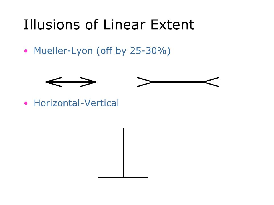 Illusions of Linear Extent Mueller-Lyon (off by 25-30%) Horizontal-Vertical