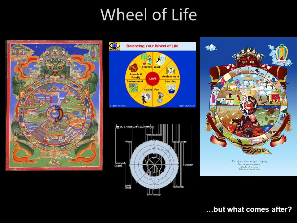 Wheel of Life …but what comes after?