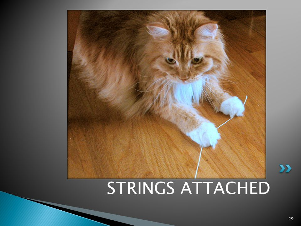 STRINGS ATTACHED 29