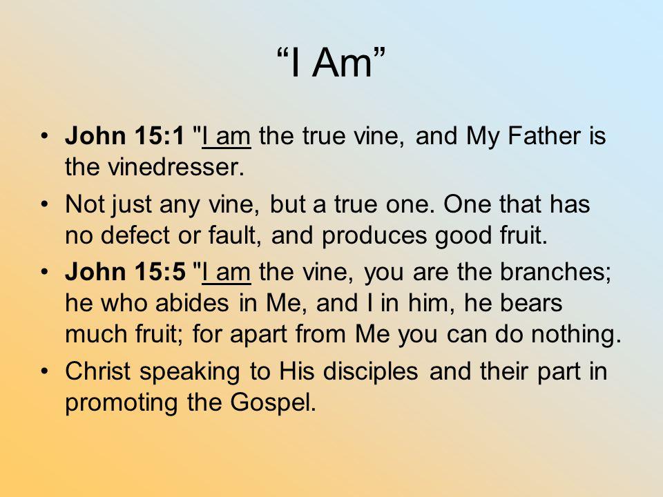 """""""I Am"""" John 15:1"""