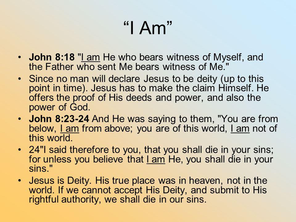 """""""I Am"""" John 8:18"""