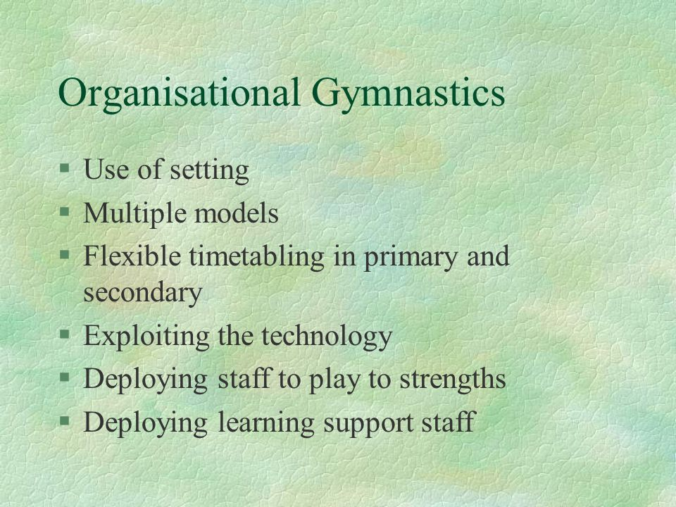 Organisational Gymnastics §Use of setting §Multiple models §Flexible timetabling in primary and secondary §Exploiting the technology §Deploying staff to play to strengths §Deploying learning support staff
