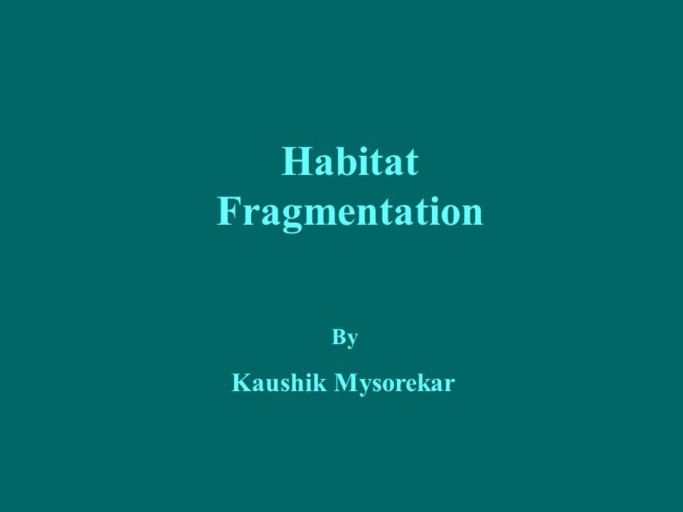 Habitat Fragmentation By Kaushik Mysorekar